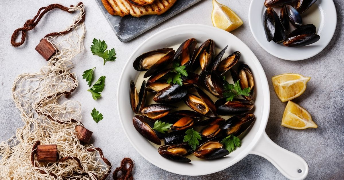 What Are Mussels?
