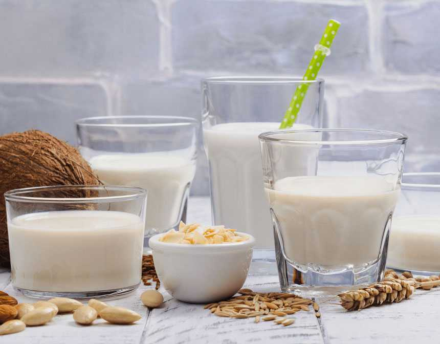A Guide for Types of Milk