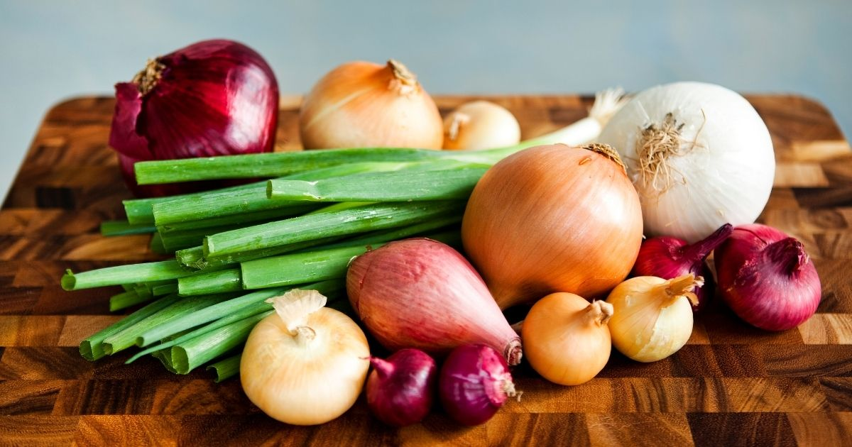 Types of Onions & Uses